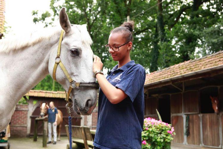 m-15-08-14-d0227-Photoshooting FCM&P, Seniorenbegleitung&Pferdepflege