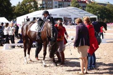 m-17-35-d0749-Details-Para-Grade I-Entourage-Elke Philipp-GER-Pferd Regalitz-HANN