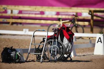 m-17-35-d0702-Details-Para-Grade I-Rollstuhl-Elke Philipp-GER-Pferd Regalitz-HANN