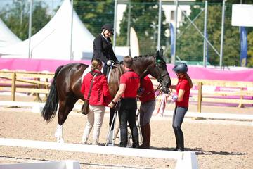 m-17-35-d0701-Details-Para-Grade I-Vorbereiten-Elke Philipp-GER-Pferd Regalitz-HANN