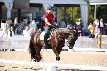 m-17-35-d0696-Details-Para-Grade I-Vorbereiten Pferd Regalitz-HANN-Elke Philipp-GER